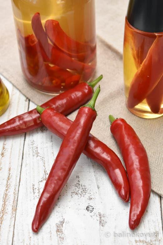 生赤唐辛子の保存法・活用法|2種類のオイル漬け・焼酎漬け