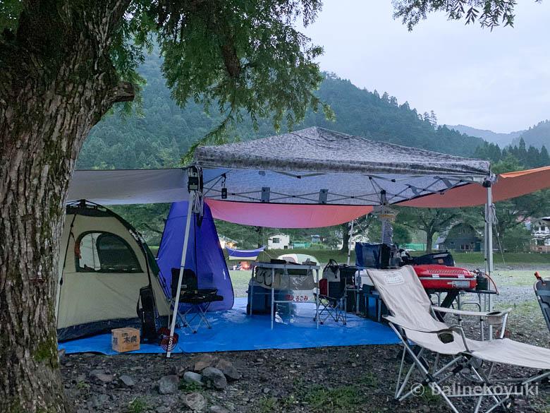 木の下のテント設営