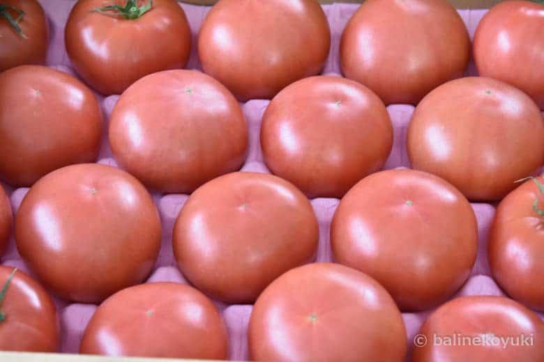 博多のトマト