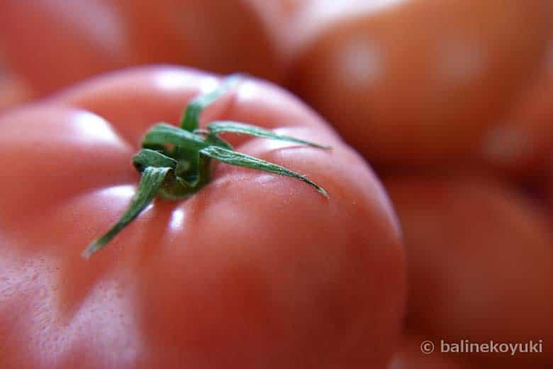 福岡県産トマト
